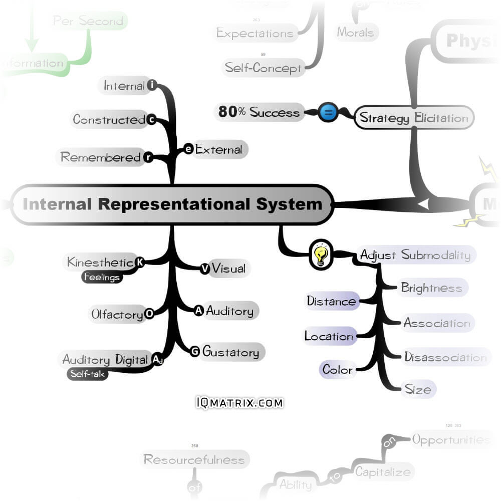 Internal Representational Systems and Submodalities